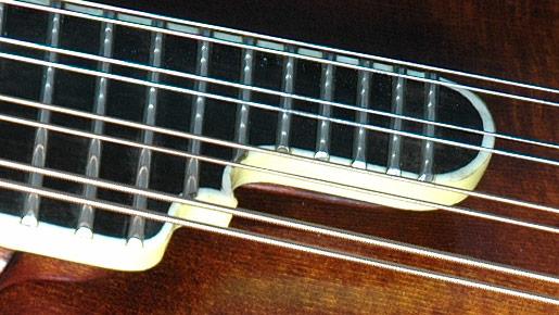 Weber Neck & Fingerboard