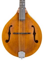 Bitterroot A14-F Mandolin