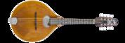 Bitterroot A14-O Mandolin
