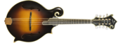 Diamondback F14-F Mandolin
