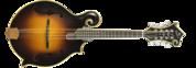 Diamondback F14-F Mandolin