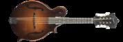 Gallatin F14-F Mandolin