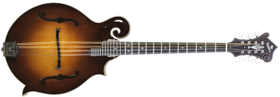 Yellowstone F24-F Octave Mandocello