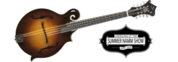 Yellowstone F20-F Octave Mandolin
