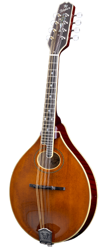 Vintage A Mandolin - Features