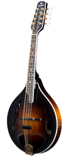 Fern Mandolin - Features