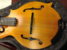 My Dog Ate My Mandolin: Part II